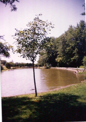 1990_9_2
